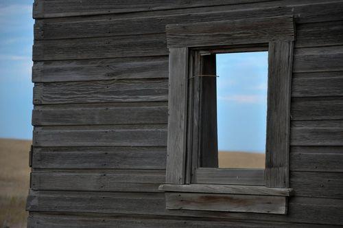 Window by Heather Binns